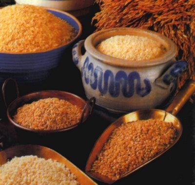 Cereales y sus propiedades