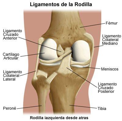 Lesión del ligamento de la rodilla
