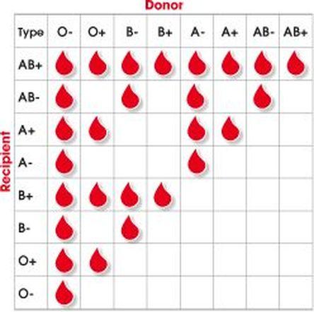 Tipos de Grupos sanguíneos