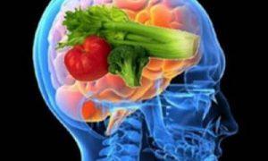 Alimentos que propician la salud de nuestro cerebro