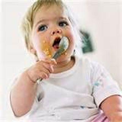 El bebe a los hasta los 12 meses - Cuantas comidas hace un bebe de 8 meses ...