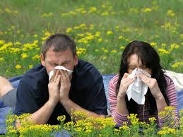 Medicamentos para las alergias