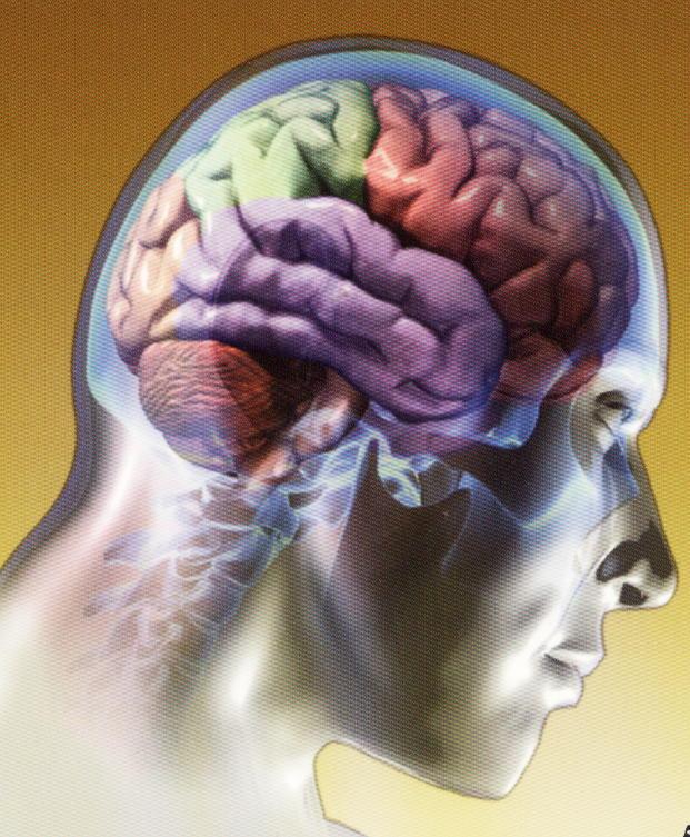 11 cosas que hacemos a diario y perjudican nuestro cerebro