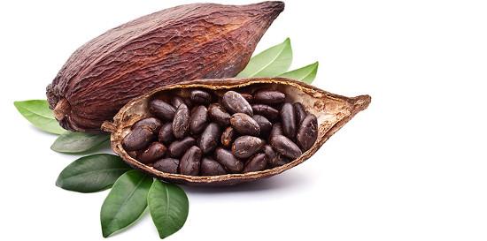 Beneficios y propiedades del cacao para la salud